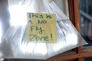 plastic-bag-fly-penny2008[1]